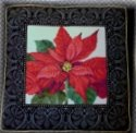 "EMS150 ""Poinsettia"" - the Winter Cushion"