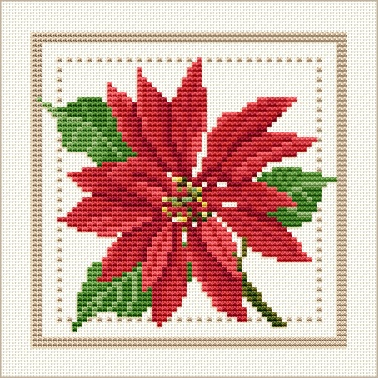 December - Poinsettia