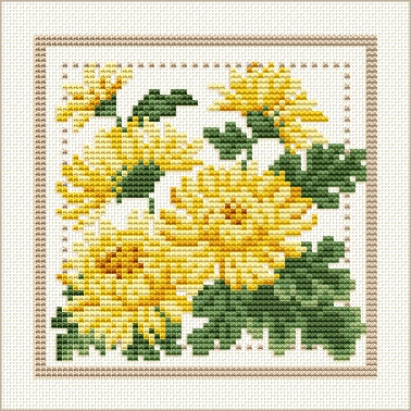 November - Chrysanthemum